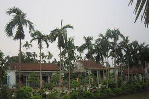 Hồn quê trong xây dựng nông thôn mới