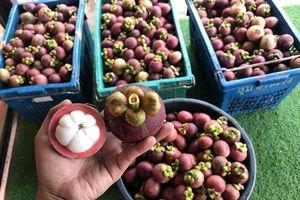 Chủ quầy trái cây 'chặt chém' du khách ở Huế bị xử phạt