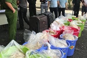 Thưởng nóng cho công chức hải quan bắt giữ lô ma túy trị giá 500 tỷ đồng