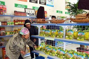 Quảng Yên: Tái cơ cấu nông nghiệp gắn với OCOP