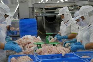 Cá tra Việt Nam 'chinh phục' thị trường khó tính Nhật Bản