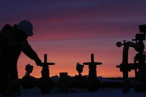 Ukraine khôi phục vận chuyển dầu từ Nga sang Châu Âu qua đường ống Druzhba