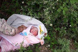Phát hiện bé gái 2 ngày tuổi bị bỏ rơi ở trong rừng