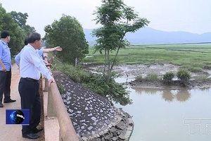 Thanh Hóa xin chuyển đổi 65 ha đất trồng lúa để làm dự án tiêu úng