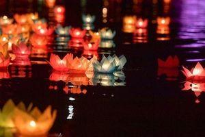 Chùa Tam Chúc đẹp lung linh trong đêm hoa đăng cầu hòa bình thế giới