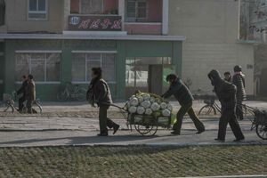 Các tổ chức tư nhân Hàn Quốc muốn viện trợ lương thực cho Triều Tiên