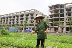 Dự án Trường Mùa Xuân ở Long Biên bị người dân phản đối, chủ đầu tư nói gì?