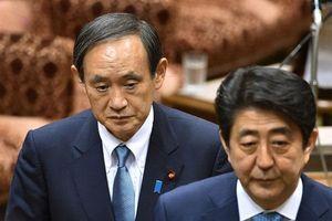Từ con của người trồng dâu thành ứng viên kế nhiệm Thủ tướng Abe