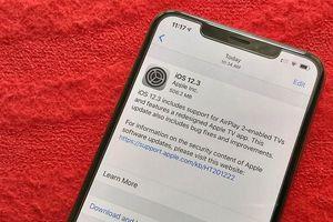 iOS 12.3 làm người dùng iPhone lock ở VN khốn khổ