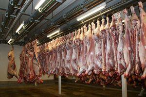 Cấp đông thịt lợn đối phó dịch: Làm thế nào khi đang thiếu kho lạnh?