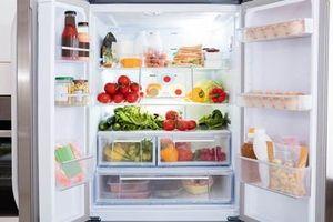 Cá để tủ lạnh 1 tuần vẫn sống, chủ nhà 'sốc'...