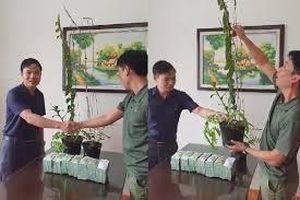 Đại gia Hà Tĩnh bất ngờ tiết lộ sau khi mua 2 chậu lan 3,5 tỷ đồng