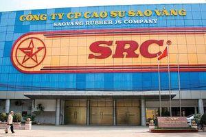 Đấu giá SRC và DRC, Vinachem muốn giảm sở hữu tại 2 'ông lớn' ngành săm lốp về 36%
