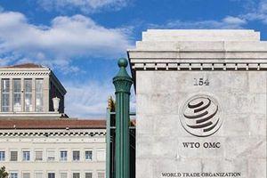 Trung Quốc đệ trình kiến nghị cải cách Tổ chức Thương mại Thế giới