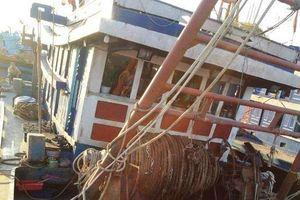 Xuống hầm cá, 1 người chết 4 người nguy kịch