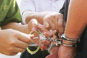 Khởi tố, bắt tạm giam Hồ Thị Thanh Phúc, Tổng giám đốc Công ty Sadeco