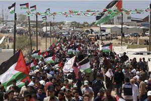 Biểu tình tại Dải Gaza, hàng chục người thương vong