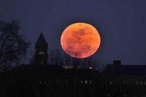 Tàu thám hiểm Thỏ Ngọc của TQ chấm dứt câu hỏi 60 năm về Mặt Trăng
