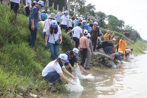 Phóng sinh 10.000 con cá giống dịp lễ Phật đản