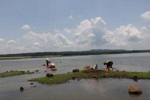Người dân đổ xô đi cào hến ở lòng hồ Ea Kao, Đắk Lắk: