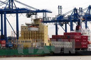 Tiềm năng phát triển nguồn nhân lực cho ngành logistics
