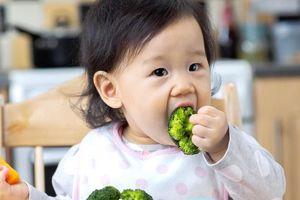Không nêm mắm muối vào đồ ăn của trẻ cho đến khi bé 2 tuổi