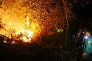 Huyện Điện Biên: Cần chủ động trong phòng chống cháy rừng
