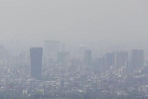 Mexico: Tuyên bố khẩn cấp tình trạng ô nhiễm không khí do cháy rừng