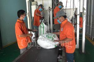 Cận cảnh các nhà máy chế biến gạo lớn nhất đồng bằng sông Cửu Long