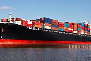 Yêu cầu đề xuất giải pháp 'cứu' doanh nghiệp vận tải biển