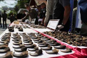 Triệt phá đường mua bán động vật hoang dã từ nước ngoài về Việt Nam