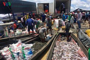 Cá bè trên sông La Ngà chết trắng, người nuôi không kịp trở tay