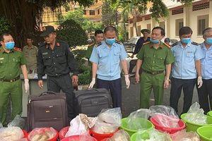 Phó Thủ tướng Trương Hòa Bình gửi thư khen các lực lượng phá đường dây vận chuyển 500kg ma túy
