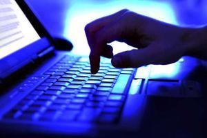 Châu Âu và Hoa Kỳ hợp tác truy quét tin tặc lấy cắp 100 triệu đô la