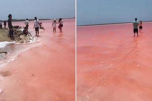 Clip: Bí ẩn biển nước hồng rực như cổ tích ở Colombia