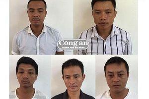 Đã khởi tố 12 đối tượng vụ phá rừng tại Phong Nha-Kẻ Bàng
