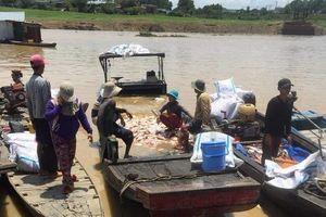 Công an điều tra vụ hơn 300 tấn cá bè chết trắng trên sông La Ngà