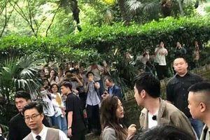 'Thử thách cực hạn' buộc phải tạm thời ngừng quay ở Vũ Hán vì lượng fan đến quá đông vây chật kín đường