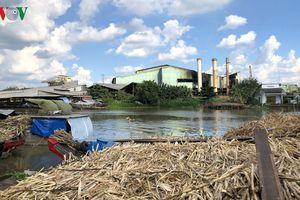 Nhà máy gây ô nhiễm ngừng hoạt động - người chở mía thuê gặp khó