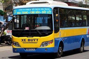 Vụ tài xế, nhân viên bán vé xe buýt đình công: Phát hiện nhiều vi phạm
