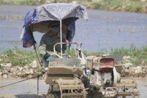 Quảng Bình: Nông dân vắt áo ra mồ hôi, làm đất dưới nắng 40 độ C