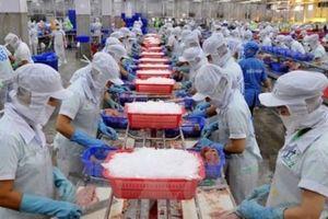 CTCP Nam Việt: Mục tiêu rải cá tra khắp thị trường Trung Quốc!