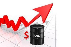 Giá dầu hôm nay 20.5: Nhảy vọt khi Ả Rập Saudi đề nghị giảm sản lượng