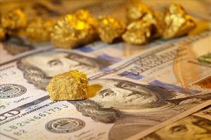 Giá vàng hôm nay 20.5: Sức ép từ USD, vàng chịu áp lực, tiềm ẩn nguy cơ