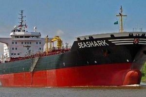 Kiev triệu đại sứ Ai Cập yêu cầu giải thích việc bắt giữ tàu chở dầu Sea Shark