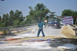 Ban Bí thư Trung ương Đảng chỉ thị tăng cường phòng chống dịch tả lợn châu Phi