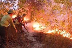 Lửa bùng phát trở lại sau khi thiêu rụi hơn 15ha rừng phòng hộ ở Quảng Bình