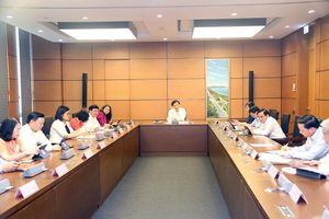 Kỳ họp thứ Bảy, Quốc hội khóa XIV: Thảo luận tại Tổ về 2 dự án luật