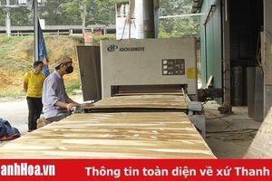 Tăng cường các biện pháp phát triển nhanh và bền vững lĩnh vực chế biến gỗ và lâm sản ngoài gỗ phục vụ xuất khẩu