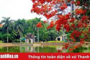 Sắc màu mùa hạ tại Hồ Máy Đèn (TP Thanh Hóa)